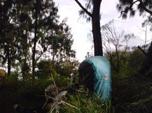 Melintasi Hutan untuk mencapai Puncak Arjuna yang menjadi Target dan Tujuan