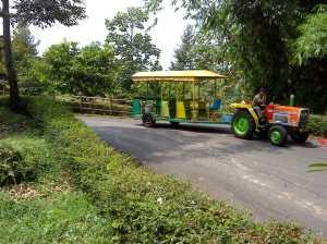 Kreta Berkepala Traktor siap mengantar berkeliling ke mana saja