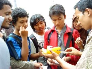 Golden Melon, Buah Andalan dan Terfavorit di Bakti Alam