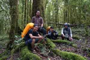 Hutan Lumut yang Super Duper Wonderfull!!!!