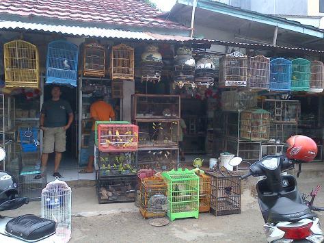 Melewati Pasar Burung pas OTW pulang
