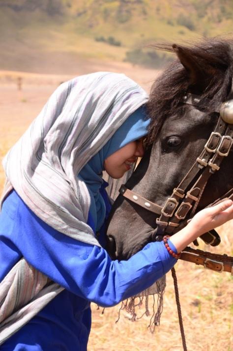 namanya bejo...kuda gagah asal Sumbawa yang jinak ditangan perempuan